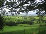 How green is my valley, view from a hill walk half a mile north-east of Blaencwm Lodge