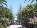Gardens in Tavira
