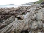 Great rock pooling