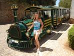 City Tour by Noddy Train