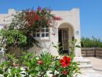 Bijou garden (front entrance), private driveway