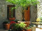 Enjoy the courtyard garden