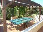 The ping pong table for inside or out