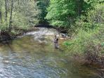 Stocked trout stream bordering the property