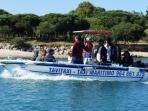 Tavira water taxi