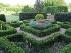 Knot garden with trimmed box, yew & tulips