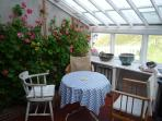 Conservatory with view of cliff side and scented pink geraniums