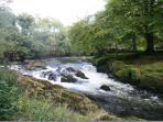 River Dyfi (Dovey) @ mallwyd