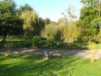 Part of our garden providing lots of shade and room for guests to relax in