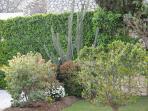 The Garden at Tamisa Residence