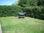 Cottage rear garden