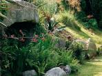 The owner has created a lovely sub-tropical garden below The Little Barn