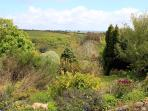 Far-reaching views from the top of the garden