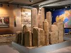A visit to the Petrified Forest and Museum (voted Europe's premier Geopark) is a great excusion