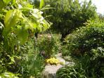 Strolling Path in Villa Gardens