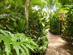 Elevated Boardwalk through the Gardens