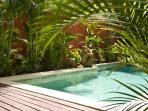 Pool, Sun deck & Monkeys