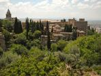Visit the The Alhambra Palace