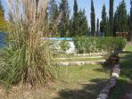 Garden where it is possible to have a picnic