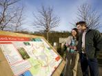 Follow the red kite trail on a local walk