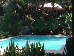 Be My Guest Cabinas- Pool and Mini Kitchen