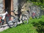 4 mountain bikes are available