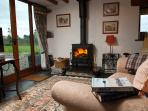 View of  'Clearview' woodburning fire