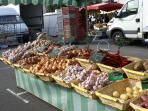 Montrichard market - the onion and garlic seller