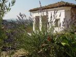Terrace Houses of Sirince