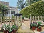 The wonderful front garden