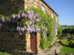 Front Door and garden