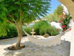 Enjoy some shade under the Jacaranda Tree