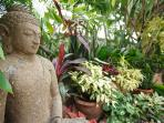 The Hideaway Suites' residential Buddha nestled in the garden watching out for our 2 cats!!!