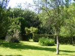 rear garden leading to orchard