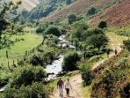 The Doone Valley - Exmoor