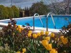 Spring in El Nogal