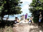 Zapatilla Islands - Explore Sea Turtle Breeding Grounds