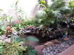 Our turtle pond, Larry, Curly and Moe in residence