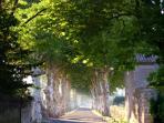 Nearest Village Cazouls d'Herault
