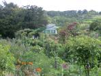 Monet gardens (1 hour drive)