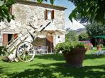 Azienda Fontelunga-il Bozzino garden