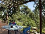 Enjoy your breakfast under the shade