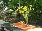 terrace, garden and barbecue