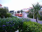 Road Train from apartment garden