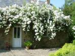 Rambling roses adorn the cottages in spring and summer.