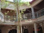 The inner patio with a Moringa tree at the center