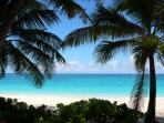 Cabbage Beach on Paradise Island, 6 miles from Birdsong is world renowned.