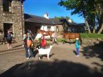 Kionslieu Farm Self Catering Cottages