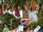 The Saturday Market in Céret