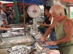 Fish stall on the Sunday market